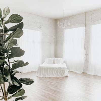 white bed in white seattle photography studio with fiddle leaf fig
